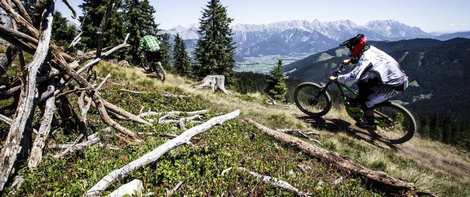 Bikepark in den Alpen in Leogang